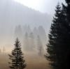 Vosges mysterieuses © Alain Balestreri