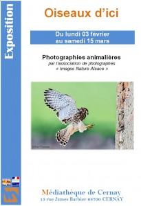 Exposition Oiseaux d'Alsace à Cernay